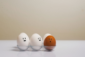 Five white eggs and one dark egg in a tray